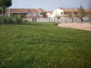 Corporate gardens in Hospital, Murcia
