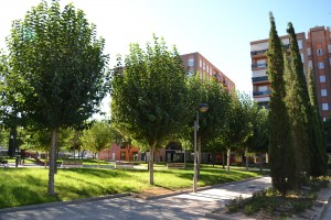 An urban oasis in the very hot southern Spain climate