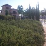 Public park in Valencia, Spain