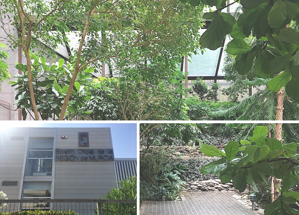 Jardín tropical Impluvium en Imprenta Regional de Murcia