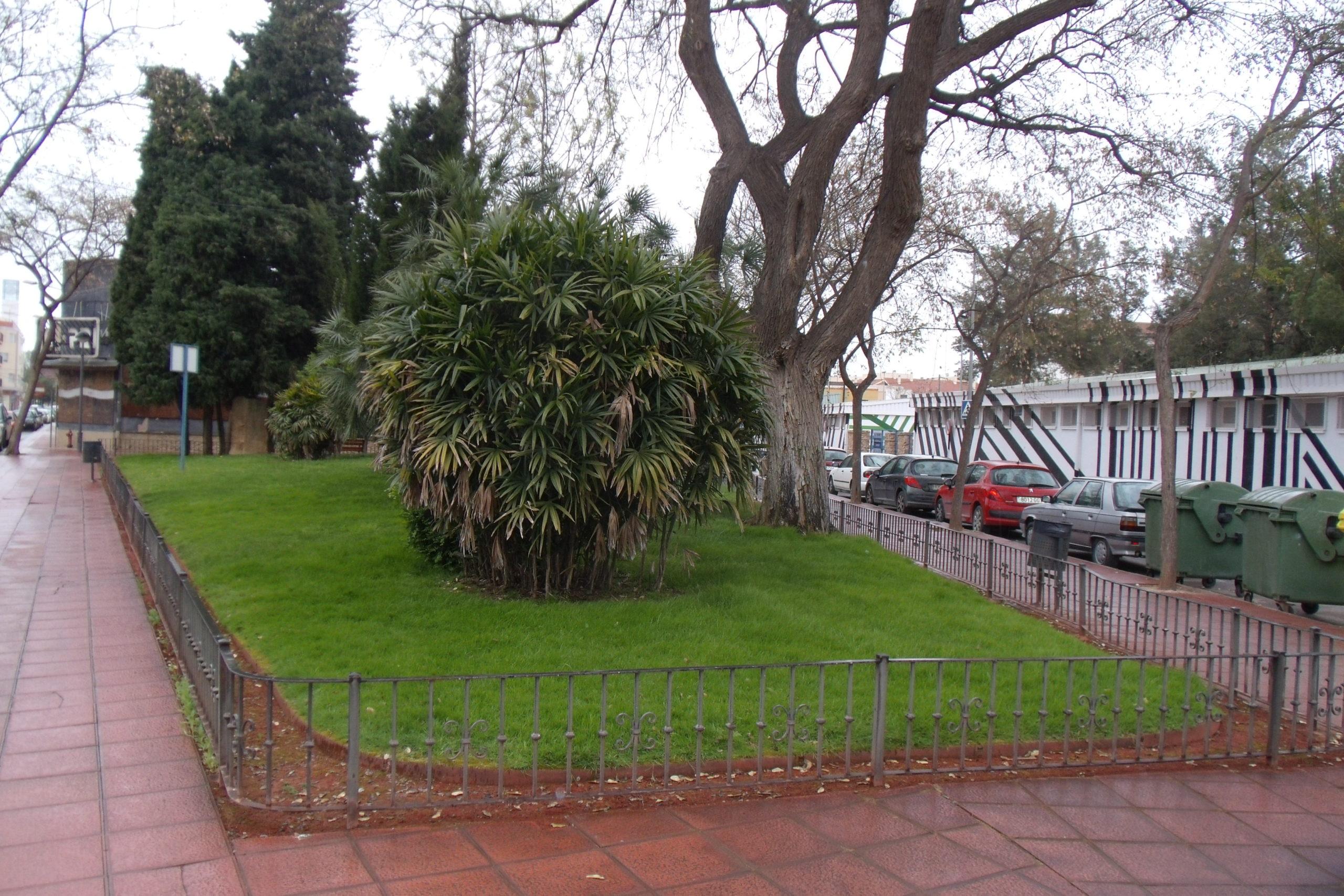 Public Garden Isidore Madritch