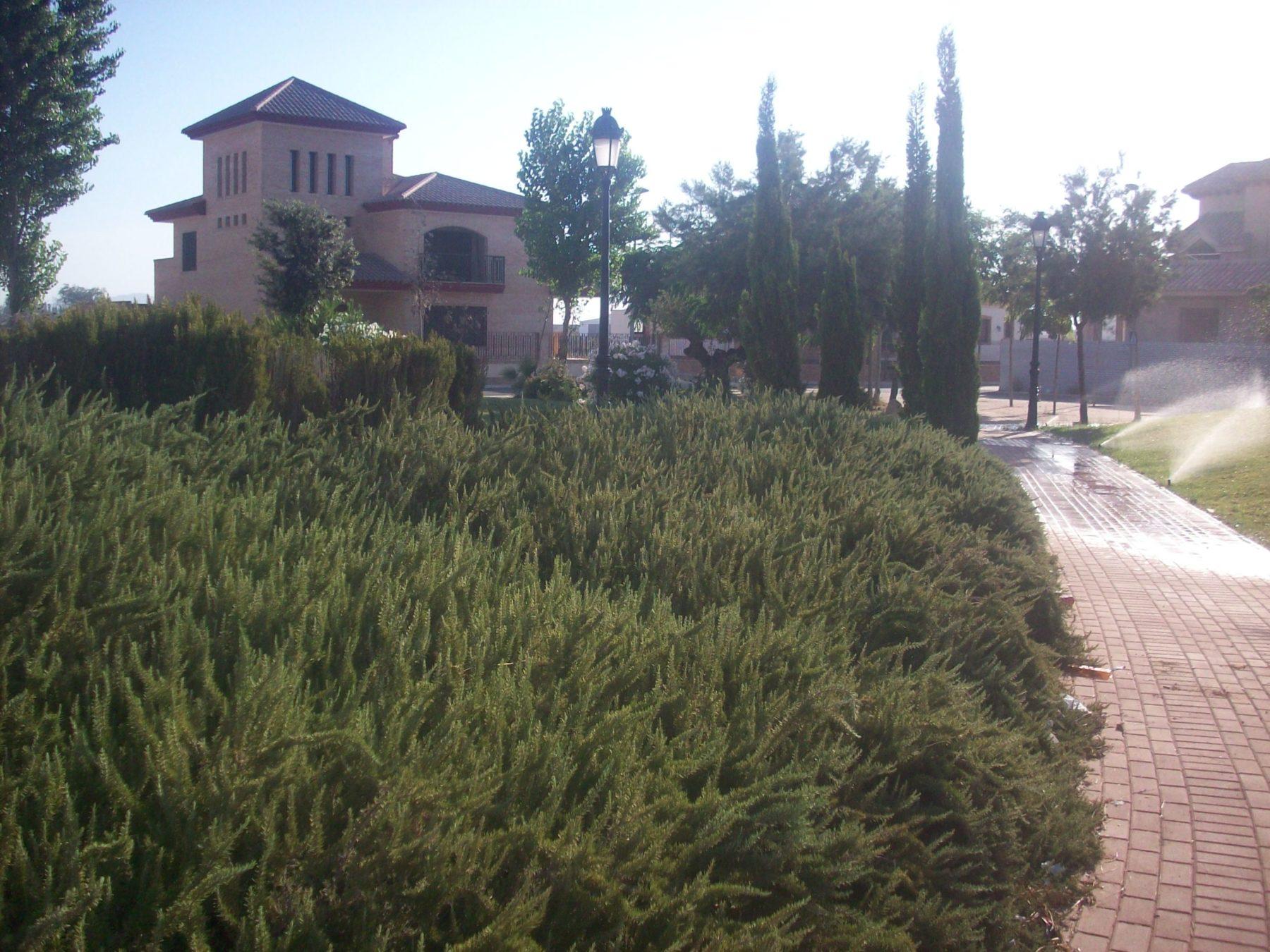 Parque público en Benimaclet, Valencia